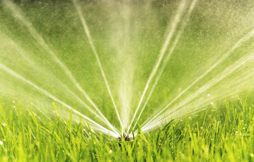 common irrigation mistakes