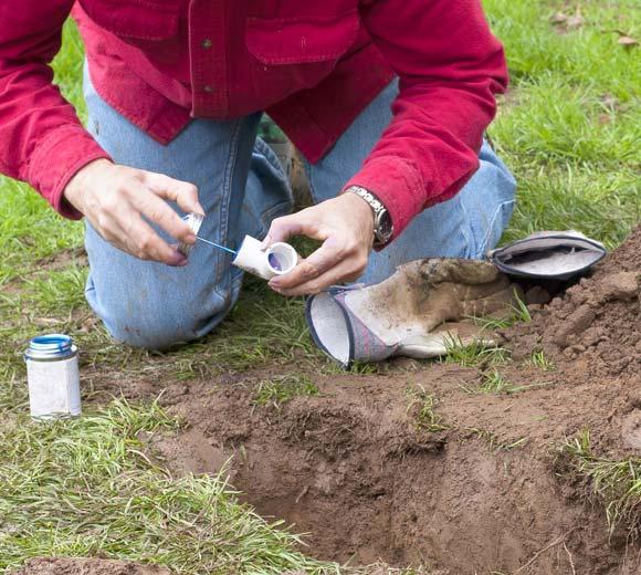 Ralph is working on a sprinkler repair in Morgan Hill